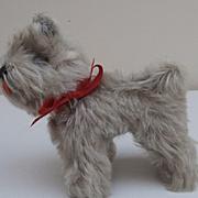 Sweet Steiff Tessie Schnauzer Dog,  1967 to 1976, Steiff Button