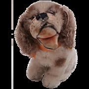 Steiff Smallest Size Cocker Spaniel Dog , Steiff Button, 1959