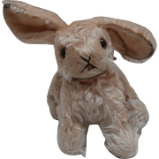 Gorgeous  Steiff Changeable Rabbit, 1958 to 1964, No Id's