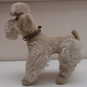 Lovely Steiff Snobby Poodle, 1954to 1958, Steiff Button