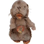 Steiff Marmot Piff, 1965 to 1969, Steiff Button