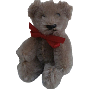 Cute Vintage Miniature Schcuco Teddy Bear