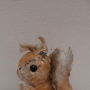 Steiff Possy Squirrel, Steiff Button 1965 to 1967