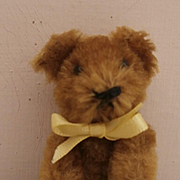 Sweet Schuco Miniature Teddy Bear, 1930/40's