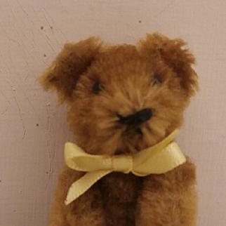 Sweet Schuco Miniature Teddy Bear, 1930/40's
