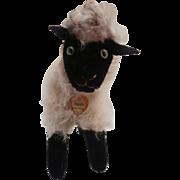 Steiff Snucki Mountain Sheep, 1967 to 1971, Steiff Chest Tag