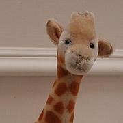 Steiff Giraffe,Steiff Button, 1965 to 1969