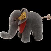Lovely Steiff Elephant, Steiff Button, 1968 to 1978.