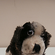Sweet Smallest Size Steiff Cockie, Cocker Spaniel Dog, 1960 to 1964, Steiff Button and Steiff Chest Tag