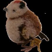 Cute Steiff Wool Bird, Steiff Button and Yellow Flag 1959 to 1964