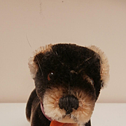 Steiff Lumpy, Dachshund Dog, 1963 to 1964, Steiff Button