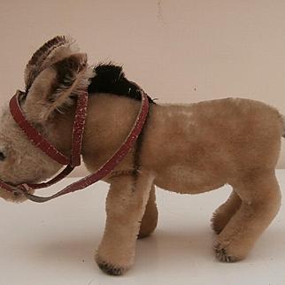 Steiff Donkey 1950 to 1958, No Id's