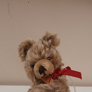 Thomas, Sweet Small Zotty Type, Hermann Teddy Bear, 1950's, Squeaker Works