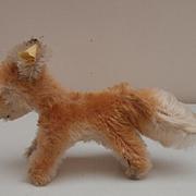 Steiff Xorry Fox, Smallest Size, 1960 to 1964. Steiff Button