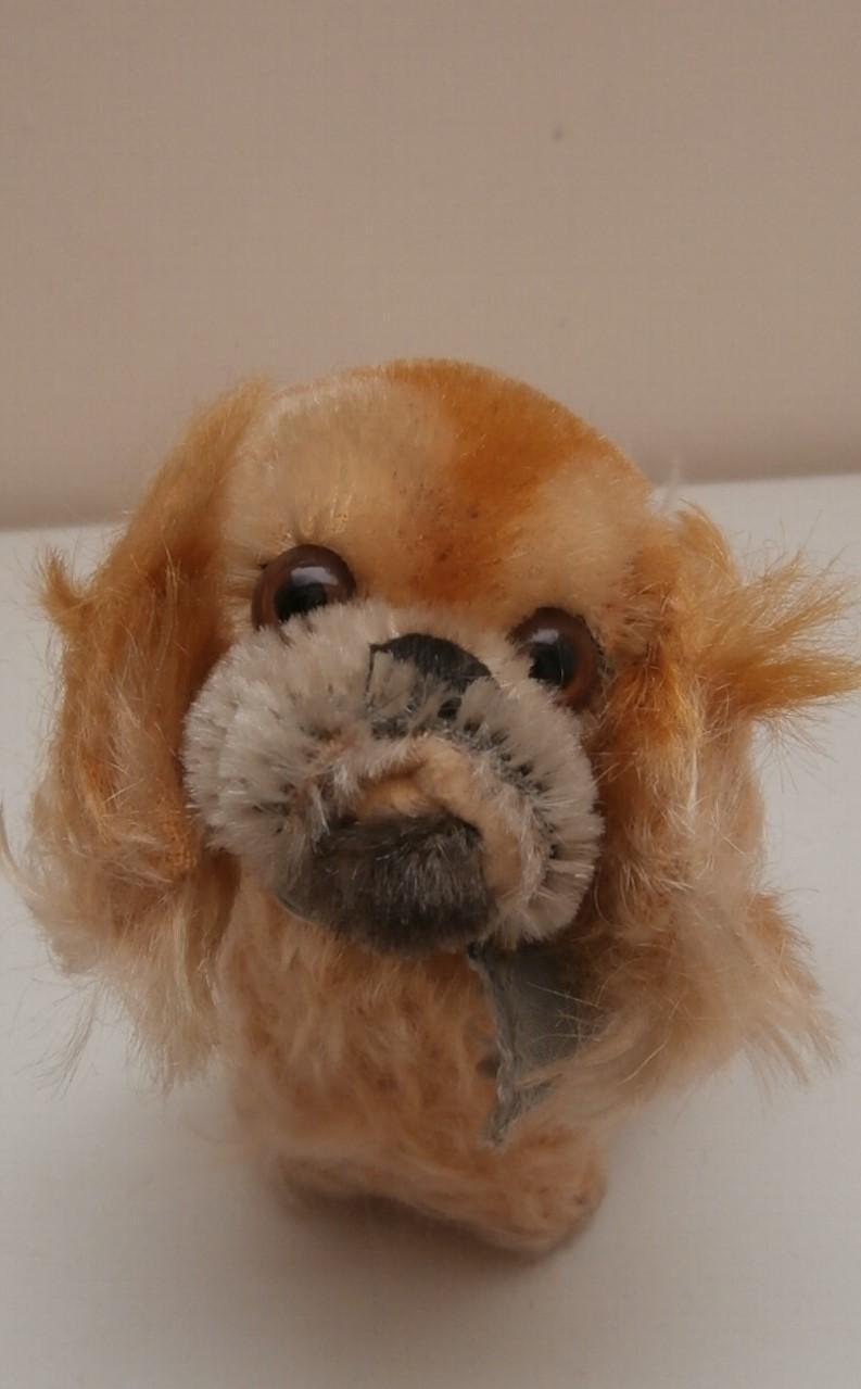 Steiff Peky Pekingese Dog, 1968 to 1976, No Button
