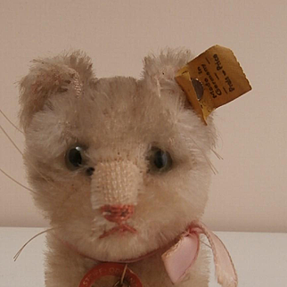 Cute Small Steiff Susi Cat, 1959 to 1964, Steiff Button, Yellow Flag, Steiff Chest Tag