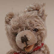 Sweet Hans,  Vintage Hermann Zotty Type Teddy Bear, Squeaker Works