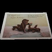 Early Teddy Bear Postcard Showing Teddies Skating.