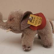 Rare Smallest Size Elephant 1956 to 1958, Steiff Button, Steiff Saddle