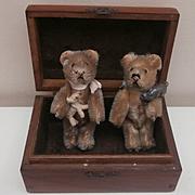 Well Loved Schuco Teddy Bears