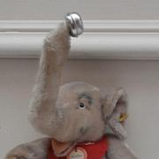 Steiff Jumbo Elephant 1968 to 1970. Steiff Tag and Steiff Button