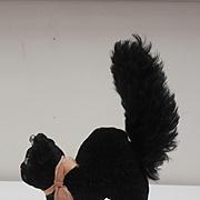 Steiff Lucky Black Tom Cat, 1959 to 1969, Steiff Button