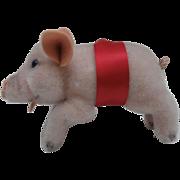 Steiff Jolanthe Pig, 1965 to 1967, No Id's