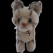 Steiff Tabby Cat, 1959 to 1964, No Id's