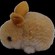 Steiff Wool Bunny Rabbit, Steiff Button 1969 to 1975
