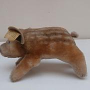 Steiff Dalle, Wild Boar Pig. Steiff Button, Steiff Chest Tag 1965 to 1967