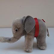 Steiff Elephant 1958 to 1964, No Id's