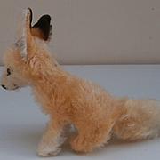 Steiff Xorry Desert  Fox, Smallest Size, 1960 to 1967. No Id's