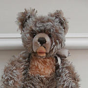 Steiff Zotty Teddy Bear, 1959 to 1964, No Id's
