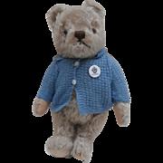Peter , Gorgeous Vintage Steiff Teddy Bear, No Id's