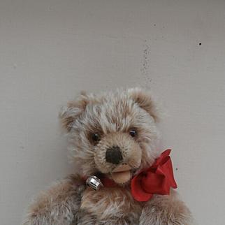 Marlon, Steiff Zotty Teddy Bear, 1959 to 1964, No Id's