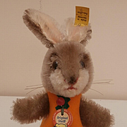 Wonderful Steiff  Bunny Rabbit Night Cap, Steiff Button, Steiff Chest Tag, 1968 1973