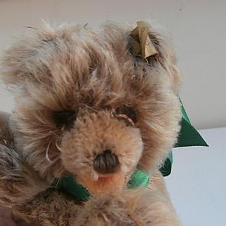 Steiff Floppy Zotty, Teddy Bear, 1959  to 1967, Steiff Button