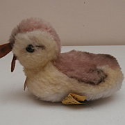 Steiff Duckling, 1968 to 1976, Steiff Button and Chest Tag