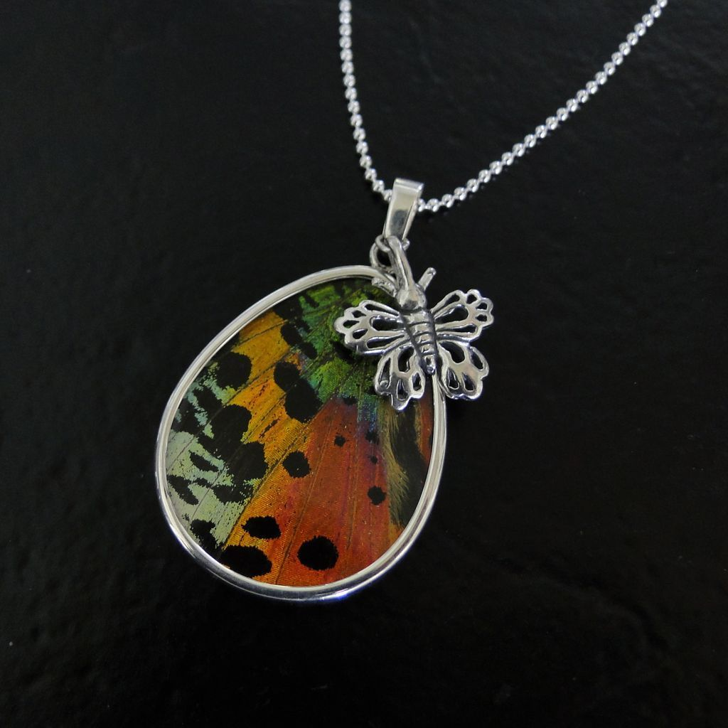 Real Madagascar Sunset Moth Butterfly Wing Necklace - Sterling Silver