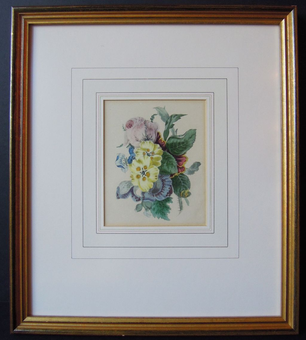 pair of beautiful framed hand painted botanical prints ca 1840 1850