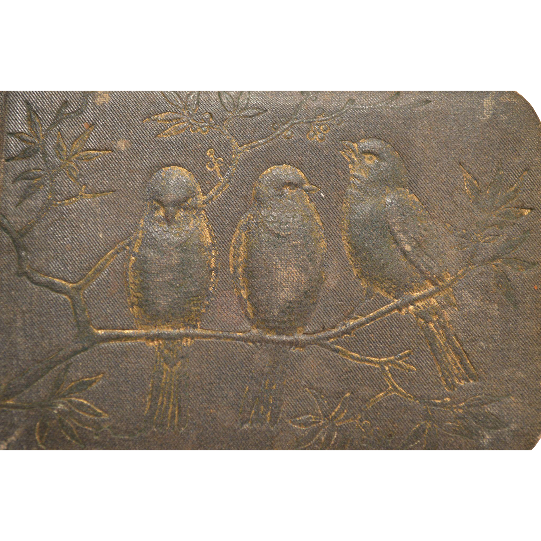 1880's Autograph Book ~ Raised Birds on Cover ~ 1882