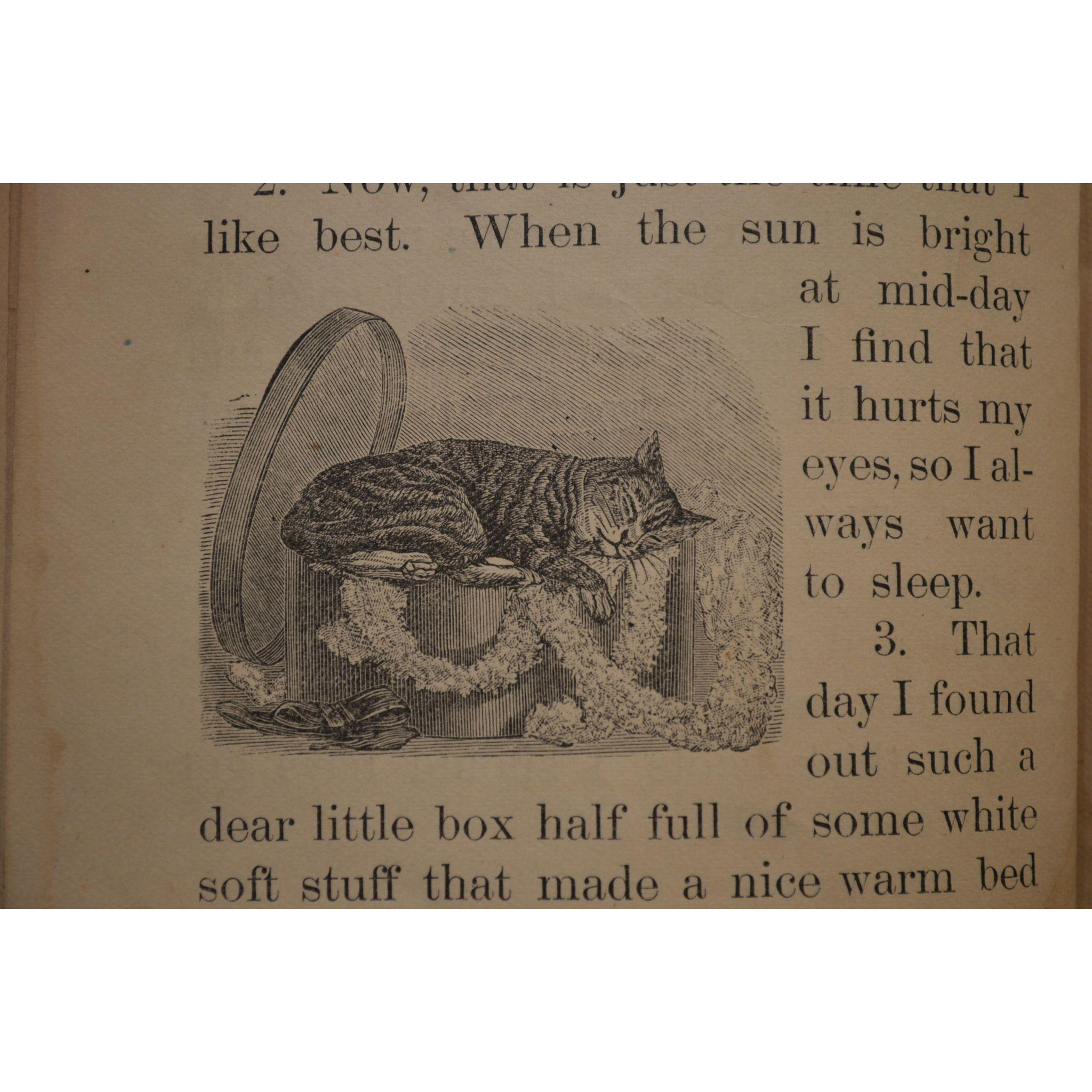 First Natural History Reader ~ by Rev JG Wood Published by Boston School Supply Co. 1886