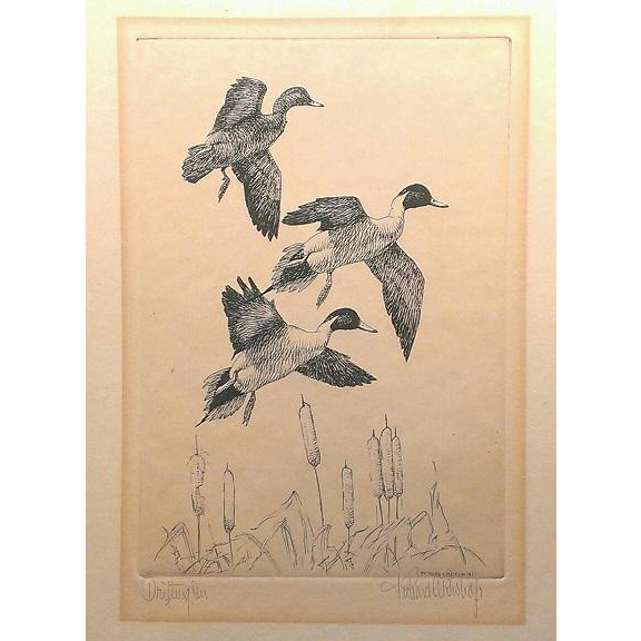 "Original etching of Pintail Ducks signed by Richard E Bishop, titled "" Drifting On"" circa 1941."