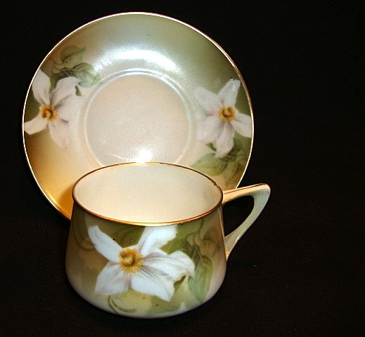 Nice German Porcelain Demitasse Cup and Saucer with White Daffodil ~ REINHOLD SCHLEGELMILCH - R.S. GERMANY (Germany) - ca 1910 - 1938