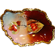 "Exquisite Austrian Porcelain Dish ~ Hand Painted  Autumn Currants ~ Pickard Artist Signed  ""Hahn"" ~ P.H. Leonard  NY based Import CO ~ Jul M Brauer Chicago IL 1905-1910"