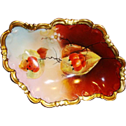 "Austrian Porcelain Dish ~ Hand Painted Autumn Currants ~ Pickard Artist Signed ""Hahn"" ~ P.H. Leonard NY based Import CO ~ Jul M Brauer Chicago IL 1905-1910"