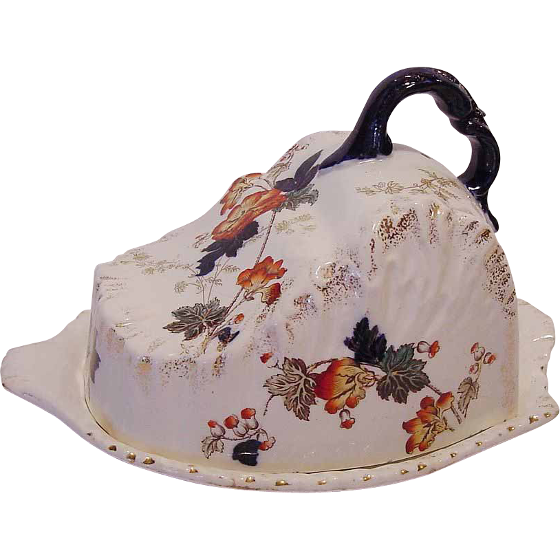 "Splendid Semi-Porcelain English Cheese Keeper ~ Multi-Colored Transfer of Flowers ~ Pattern ""Danube"" by Henry Alcock Cobridge England 1891-1910"