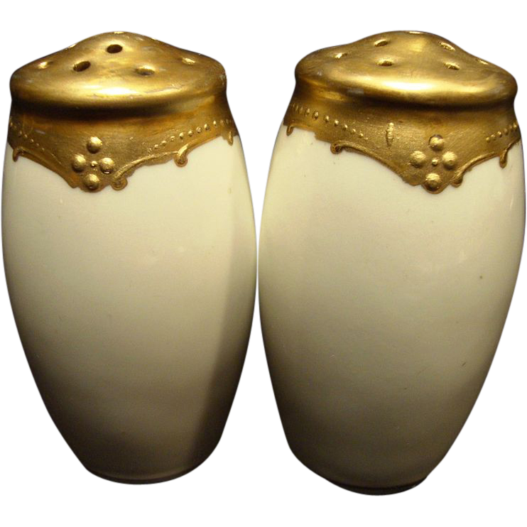 Wonderful Salt and Pepper Set by Pickard ~ Gold on White ~ Pickard Studios 1895-1898
