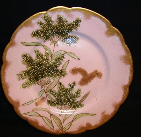Fantastic Limoges Porcelain Cabinet Plate ~ Hand Painted with Queen Ann's Lace ~ 1876 -1889 Haviland & Co Limoges France