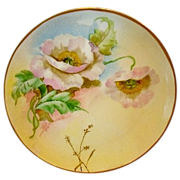 "Wonderful Limoges Porcelain Cabinet Plate ~ Hand Painted by Pickard Artist ""Florence James"" with Poppies ~ Haviland France / Pickard 1905-1910"